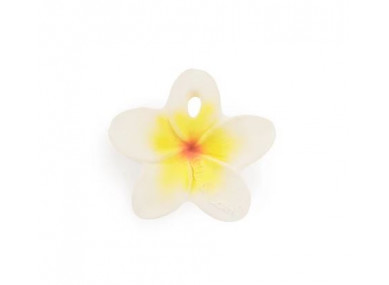 HAWAII THE FLOWER