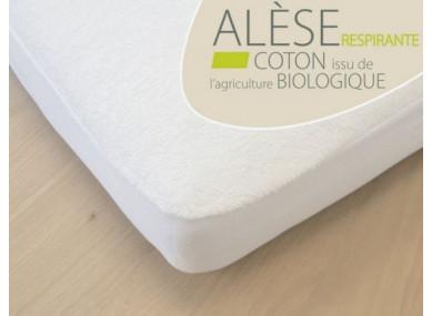 ALESE COTON BIO-60X120